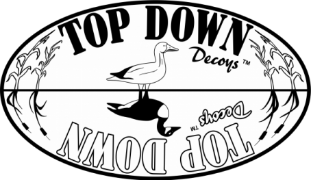 Top-Down-Decoys