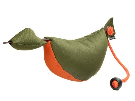 Mystique bird dog dummy