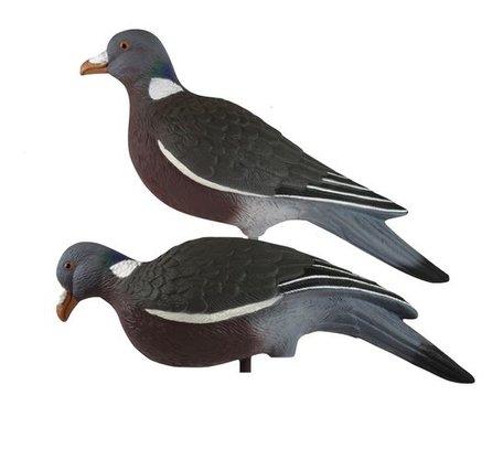 Enforcer full body pigeon volle lokduiven