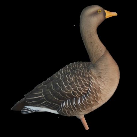 Avian-x Grauwe gans lokkers (6 st.) incl. draagtas