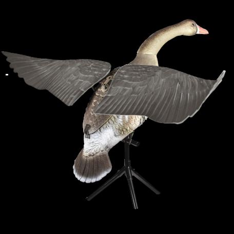 Lucky Duck grauwe gans flapper